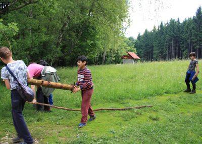 Gozdovnik - Kažipot narave I - 2.-4. junij 2017